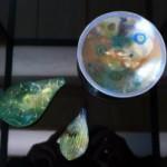 松島巌さんのガラス作品、湯郷で観賞!