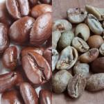 コーヒー焙煎、煎りあがりと不良豆です。
