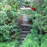 ギャラリーへのミニ階段です。